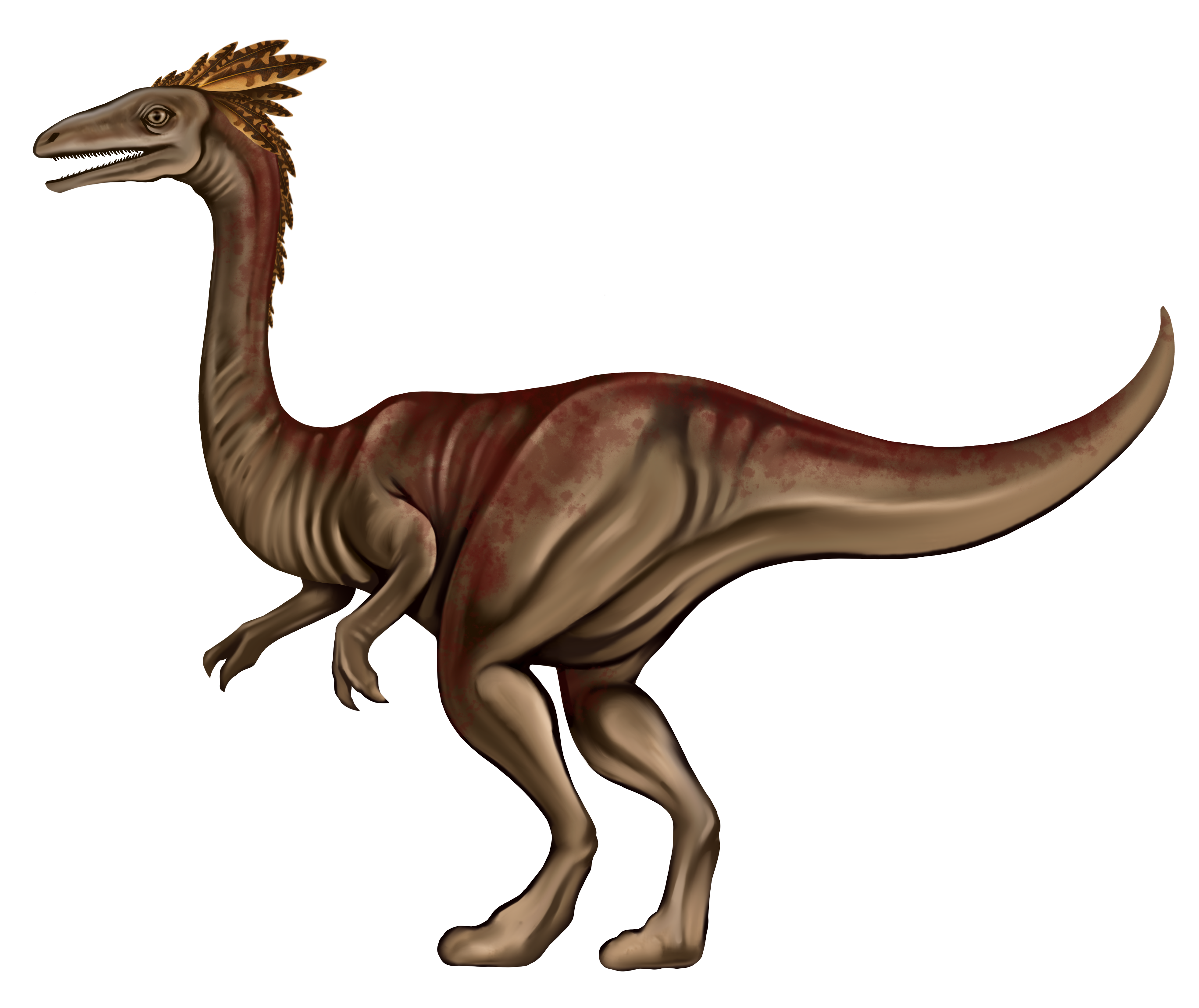 Dinosaurs: Scaled Beasts of the Jungles & 5e Ornithomimus (dinosaur) stats